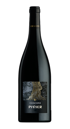 Pivier, vino rosso biologico, Merlot